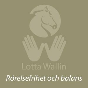 lottawallin.se
